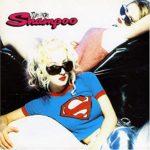 Shampoo(シャンプー)の今。「Trouble」が大ヒットしたアイドル歌手の現在